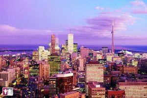 Купити квитки на літак в Торонто